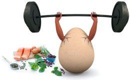 De kracht van eiwitten